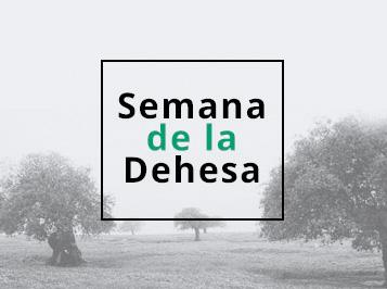 Programa de la Dehesa