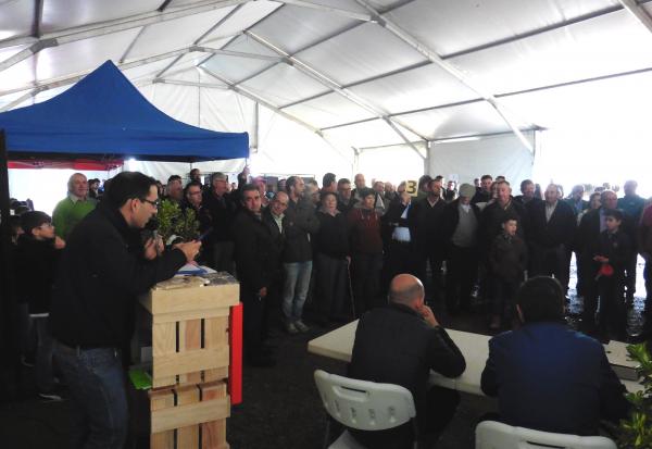 Éxito rotundo de Diputación de Badajoz en la subasta de ganado en la 65 Edición de la Feria del Ganado de La Zarza