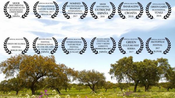 """Proyección documental de """" DEHESA"""""""