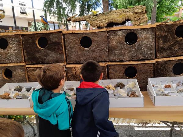 Precioso día en La Zarza celebrando el Día Mundial del Medioambiente con nuestro Museo Itinerante de Medioambiente de Badajoz (MIMABA) y con nuestros talleres ambientales