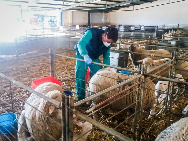 Diputación de Badajoz garantiza el cuidado de animales y plantas manteniendo servicios mínimos en el Vivero Provincial y la finca La Cocosa