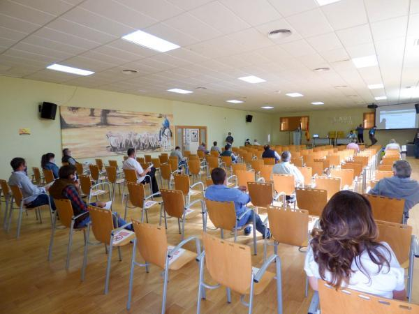 La Diputación de Badajoz ha participado en la subasta nacional de raza merina de la 35 edición del Salón Ovino de Castuera