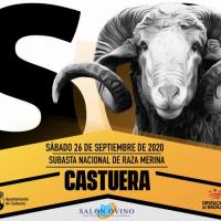 La subasta nacional de raza merina de la 35 edición del Salón Ovino de Castuera se celebrará el 26 de septiembre