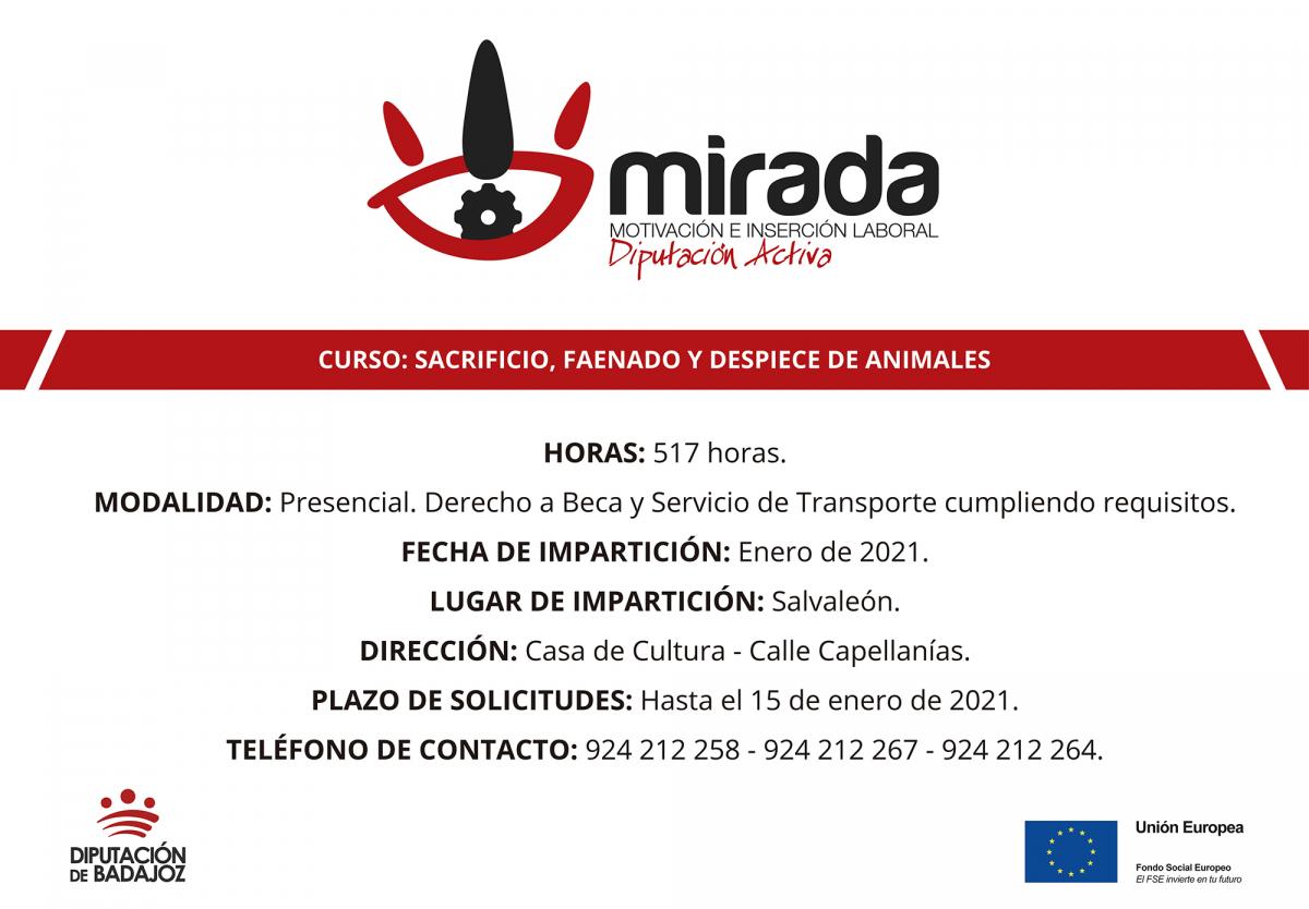 Diputación de Badajoz iniciará en Salvaleón un curso de Sacrificio, faenado y despiece de animales