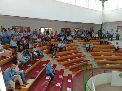 La Diputación de Badajoz ha participado en la subasta de ovinos de raza merina de la Feria Internacional Ganadera de Zafra 2021
